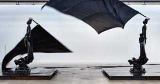 William Forsythe, Black Flags (2014)